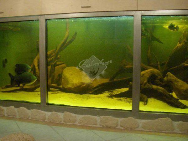 oeffentlich_aquarium_web_01